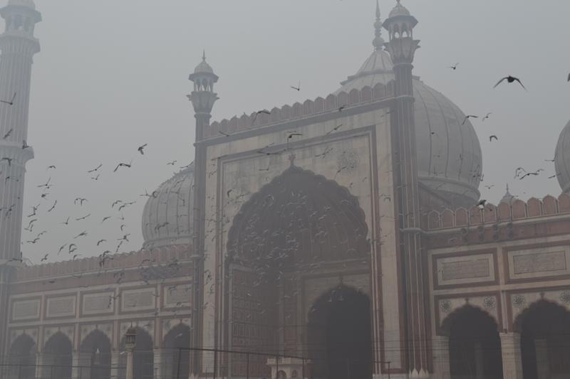 inde-Jamma-Masjid-5