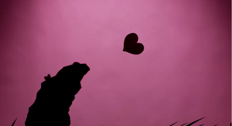 valentino-capsule-amour-2