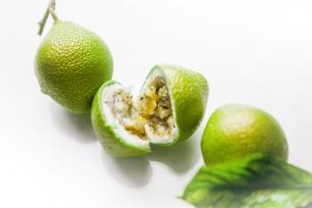 CedricGrolet Citron Vert 205 RET OK © Pierre Monetta