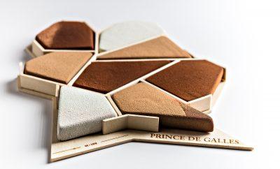 prince-de-galles-joue-puzzle-pour-noel