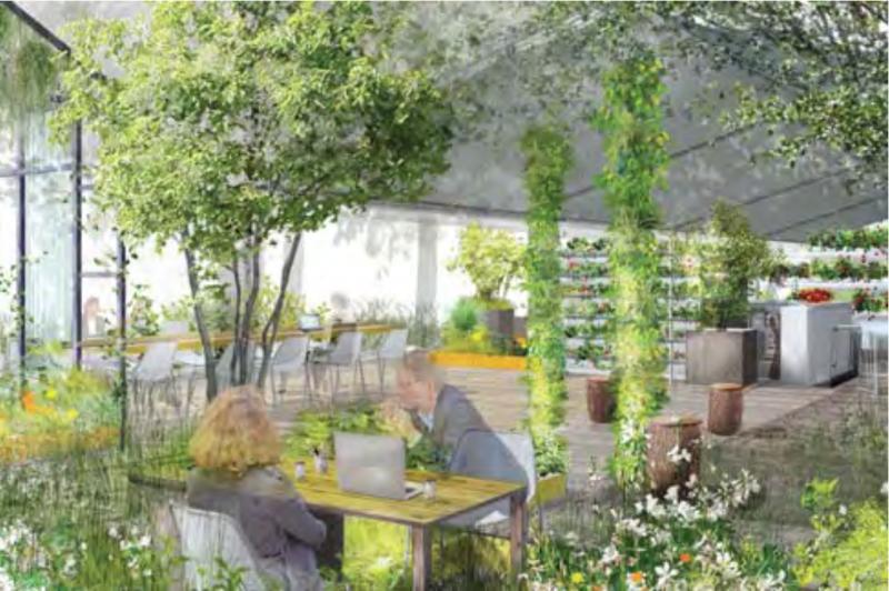 Des jardins ph m res aux tuileries oh my luxe - Les jardins de gally ...