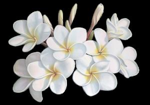 chanel-uv-essentiel-fleur-de-tiare