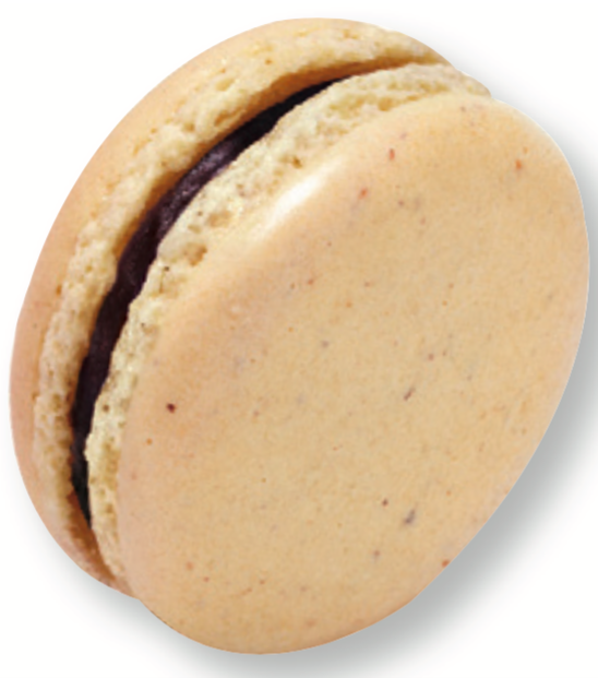 maison-du-chocolat-macaron-figaro-praliné-noisette