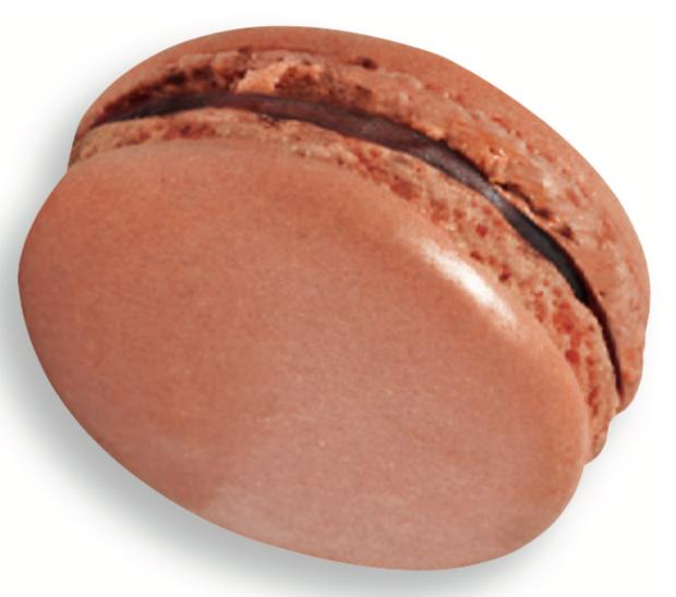 maison-du-chocolat-macaron-sylvia-chocolat-au-lait