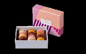maison-du-chocolat-macarons-coffret-bayadere