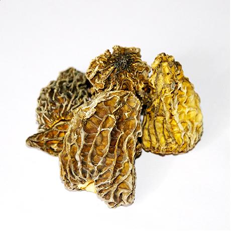nouveau-caviar-passion-caviar-gagner-morille-champignons-nobles