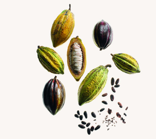 ecrins-raffines-valrhona-christian-lacroix-feves-cacao