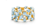 tiffany-89eme-ceremonie-des-oscars-Schlumberger-Vigne-Ring