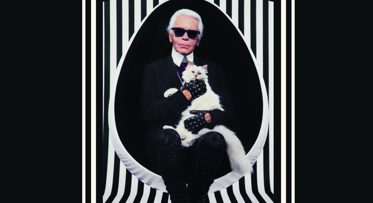 collection-cat-eyewear-karl-lagerfeld-choupette