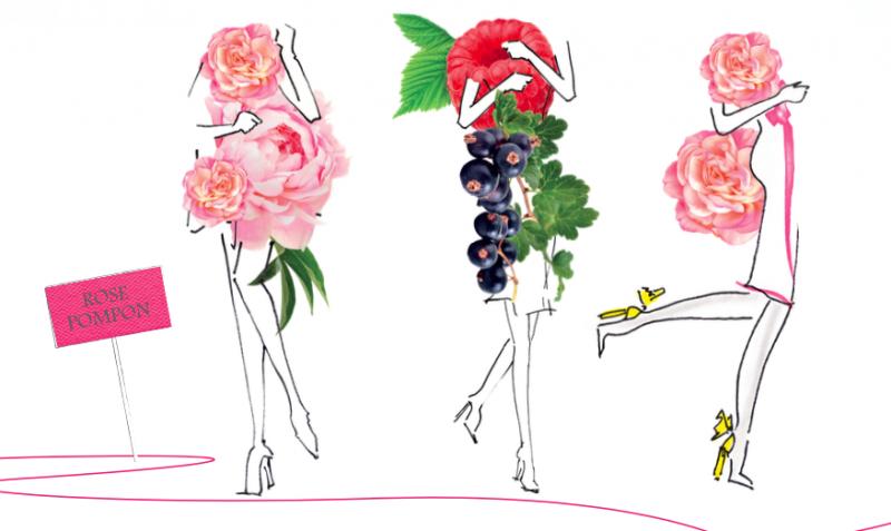 rose-pompon-dannick-goutal-est-a-croquer-fragrance