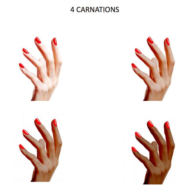 vous-etes-pretes-pour-la-nail-revolution-carnations