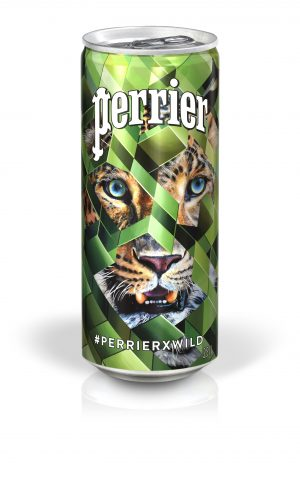 perrierxwild-celebre-cote-sauvage-vie-slim-can-panthere-face-1