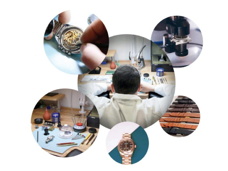 si-tas-pas-rolex-50-ans-tas-loupe-vie-collector-square-atelier-horloger