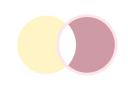 sos-primer-reprenez-couleurs-05