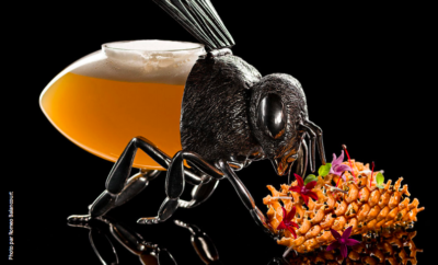 lart-de-la-mixologie-au-bar-botaniste